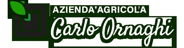 carlo-ornaghi.com